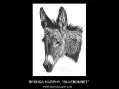 "Western Art by Brenda Murphy, ""Bluebonnet"" Blue Bonnets, Donkeys, Western Art, Westerns, Moose Art, Art Gallery, Artist, Animals, Art Museum"