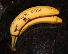 """Listen to the bananas. You can lightly trace notes on banana skins with toothpicks and then the next day the notes will show up like magic. It would be funny to write paranoid demands on bananas at the grocery store, so that when people get them home they'll be all """"What the fuck?  Are these bananas talking to me?  WHAT DOES IT MEAN?"""""""