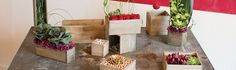 A lovely garden accent, wood planter boxes are ideal for growing herbs and fresh vegetables. Paired with fresh flowers, wood planter boxes also make a charmi...