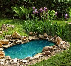 Tips för att anlägga en trädgårdsdamm - Maskinklippet