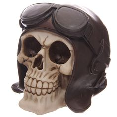 Gruesome Skull Head Money Box with Flying Cap and Goggles Looking for something a bit different to give as a gift Then check out our range of novelty