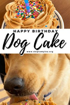 Whip up this dog birthday cake to honor your furry friend with his or her very own dog cake! We celebrate birthdays with homemade cakes – and pets are definitely part of the family! This dog cake reci Cake Dog, Puppy Cake, Dog Cakes, Baby Cakes, Happy Birthday Dog, Puppy Birthday, Animal Birthday, Birthday Cakes For Dogs, Dog Birthday Cakes
