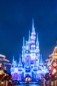 See the benefits Walt Disney World Resort Annual Passholders receive such as standard theme park parking, discounts and other perks. Disney World Resorts, Disney Vacations, Disney Parks, Walt Disney World, Mickey Mouse Wallpaper, Disney Wallpaper, Disney Love, Disney Magic, Disney Castles