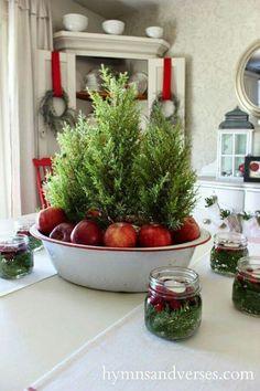 Lemon cypress in enamalware with apples.