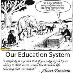 #classdismissed  by Ed Zimbardi http://edzimbardi.com