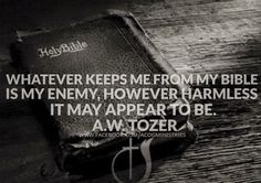 Whatever keeps me from my Bible is my enemy, however harmless it may appear to be. ~ Aiden Wilson Tozer (1897 –1963)