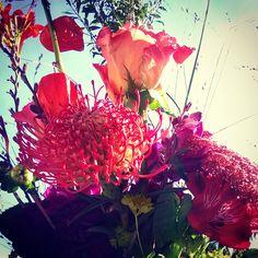 #DadaDesign #Agentur #Bonn #Blumen #Flowers #bunt #StilieundBlüte