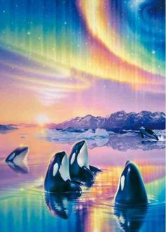 Beautiful Color Wouldnt This Be A Sight To Behold Madonna Whale