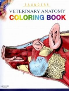 The Saunders Veterinary Anatomy Coloring Book is excellent for the student who has an interest in animals and would like to explore them in detail...