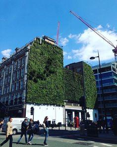 Fachada verde!  Local: Londres Foto: @arquiteturamk by arquiteturamk http://ift.tt/1UrEX56