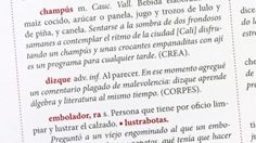 Cómo se escribe y qué contiene un diccionario de colombianismos | BBC Mundo | La tarea tiene método y requiere conocimiento técnico, pero sobre todo amor por las palabras, algo que les sobra a quienes trabajan en esta obra que verá la luz en 2017.