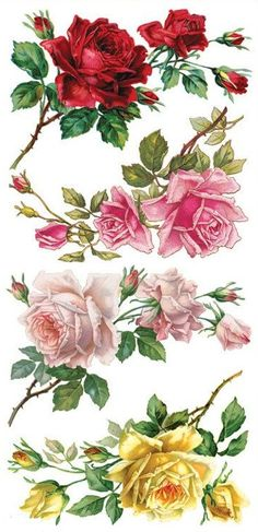 Violette Stickers Rose Corners: Beautiful floral images from victorian postcards. Wonderful colors and amazing diecut details. 2 sheets per package. Decoupage Vintage, Decoupage Paper, Vintage Diy, Vintage Cards, Vintage Flowers, Vintage Images, Vintage Floral, Images Lindas, Images Victoriennes