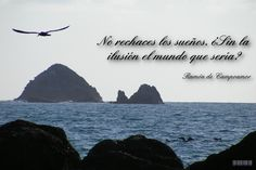 #quotecard #frases
