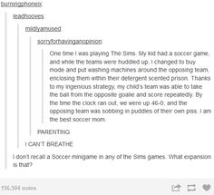 The sims funny stuff.