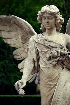 Cemetery angel…