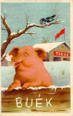 Boldog új évet  - Buék képeslap 1950