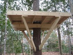 Another view of the treehouse