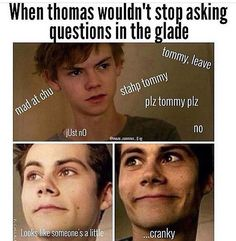 No! Bad Thomas. Now go sit in the corner
