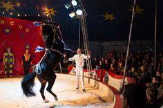 Circus Bossle brengt klassiek familiecircus in Klazienaveen!