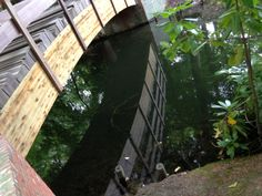 Ai Weiwei brug Antwerpen  Bridge Middelheim park