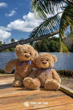 Is Endless – Cute Love Wallpaper My Teddy Bear, Cute Teddy Bears, Tatty Teddy, Teddy Hermann, Teady Bear, Cute Love Wallpapers, Teddy Bear Pictures, Funny Bears, Brother Bear