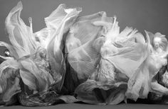 Sølve Sundsbø — Invitation a la Danse — Numero