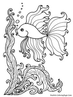 Adult Coloring Page Free Fish Pages In For Adults