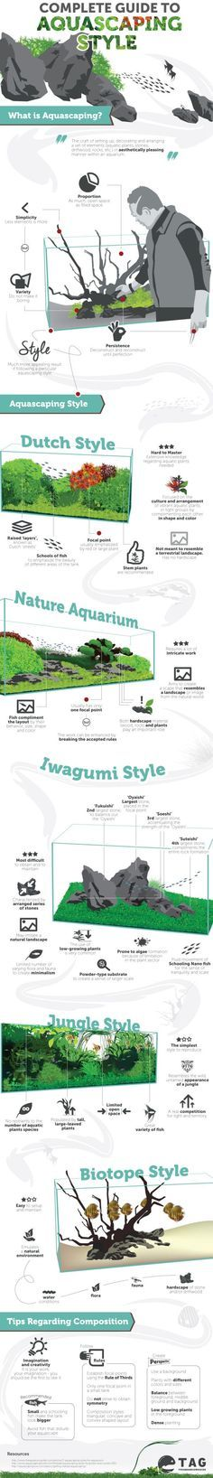 Aquascaping Style - The Complete Guide   The Aquarium Guide