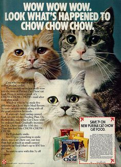 """1975 Purina Cat Chow Food Ad, """"Wow Wow Wow / Chow Chow Chow"""" Smiling Cats"""