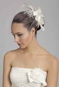 Birdcage Veil with Flower and Feather Comb from Camille La Vie and Group USA