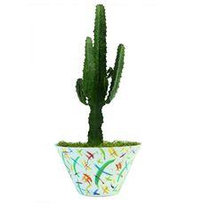 Seasonal Flowers, Cut Flowers, Planting Succulents, Cactus Plants, Summer Collection, Red Roses, Floral Arrangements, Greenery, Bouquet