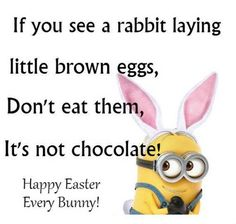 Happy Easter, Every Bunny! easter easter quotes easter images funny easter quotes easter sayings easter quotes and sayings easter quote images easter minion sayings family Happy Easter, Every Bunny! sayings bunny memes chocolate sayings funny Minions Images, Minion Pictures, Minions Love, Minions Quotes, Minions Pics, Minion Sayings, Minion Stuff, Easter Quotes Images, Happy Easter Quotes