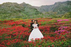 Maui Flower Field Newlywed Photo Shoot / Bliss Wedding Design / Anna Kim Photography