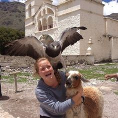 This llama and his girl best friend getting interrupted by this RUDE BIRD.