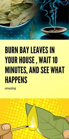 Experience The Benefits When You Burn Bay Leaves In The House - Healthy Life - receitas Natural Health Tips, Natural Health Remedies, Health And Beauty Tips, Herbal Remedies, Health And Fitness Articles, Health And Wellness, Health Insurance Cost, Natural Teething Remedies, Allergy Remedies
