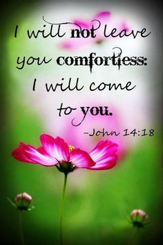 "John One of my favorite verses in the Bible. ""I will come to you. Biblical Quotes, Religious Quotes, Spiritual Quotes, Healing Quotes, Scripture Verses, Bible Verses Quotes, Bible Scriptures, Healing Scriptures, Be My Hero"