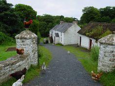 "pagewoman: "" Coshkib Farm, Cushendall, County Antrim, Northern Ireland by Colin Park """
