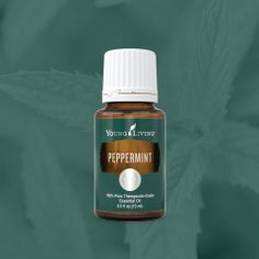Peppermint Essential Oil - Young Living #gratefulvoyager #donnadugonesignature Member #2029261