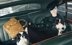 Japanese Chins in the Louis Vuitton Fall 2011 Ad Campaign!