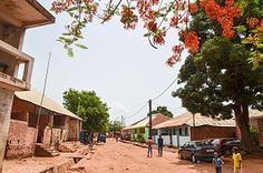 A neighborhood in Bissau. African States, Guinea Bissau, Places Of Interest, West Africa, Continents, Portuguese, The Neighbourhood, National Parks, Street View