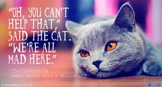 5 Famous Cats in Literature: 'We are all mad here.' Cheshire Cat Quotation