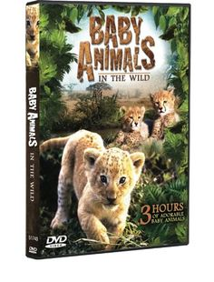 Baby Animals in the Wild (3 Hour Documentary):   BABY ANIMALS IN THE WILD is a beautiful, fascinating, and entertaining 3 hour DVD that transports you into the day to day lives of nature's adorable baby animals. Meet Lion and Cheetah Cubs, Baby Zebra's, Crocodiles, and more as they learn to hunt, eat, play and survive in the wild! A must see for all animal lovers! INCLUDING: Young of the Wild, Family Album: Donkeys and Us, The Birth of the Nile Crocodile, and Zebras Family Stripes