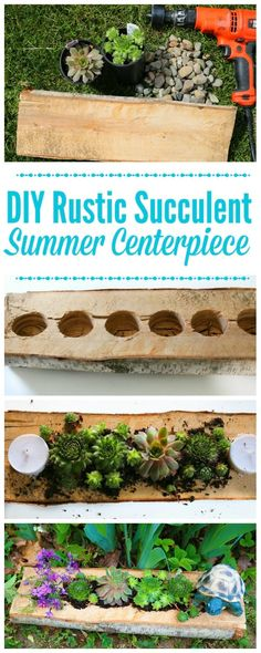 DIY Rustic Succulent Centerpiece DIY Rustic Succulent Centerpiece - Little House Living Succulent Planter Diy, Hanging Succulents, Small Succulents, Diy Planters, Succulents Garden, Succulent Plants, Indoor Succulents, Growing Succulents, Plants Indoor