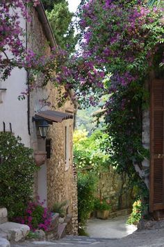 Tuscany; Italy (via La Toscana) - Perfect with the beautiful purple flowers in bloom.