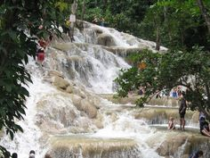 dunn's river falls jamaica pictures | we made it to the top!
