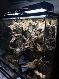 Mixed woods hardscape