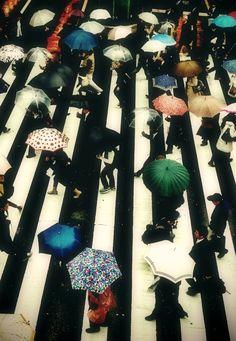 Umbrellas in Tokyo