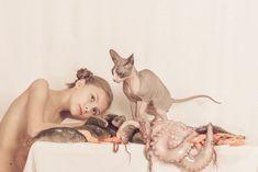 Photographer Irma Kanova Reveals the Beauty of Sphynx — The Artbo