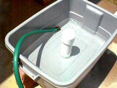 Basic 2 Inch Bell Siphon For Aquaponics Raising Rabbitshydroponicsorganic Gardeningbrisbanele Veon