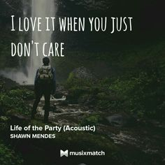 Shawn Mendes - Life Of The Party Musixmatch LyricsCard